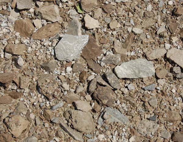 304-limestone